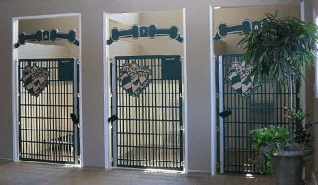 Dog Kennel Gates With Unique Designs Made By Gator Kennels